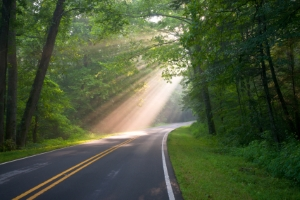 Geblitzt? Auf der Landstraße darf üblicherweise nicht schneller als 100 km/h gefahren werden.
