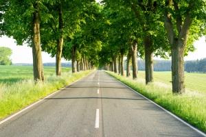 Auf der Landstraße ist die Höchstgeschwindigkeit gesetzlich geregelt.