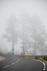 Landstraße: Die Höchstgeschwindigkeit ist den Bedingungen anzupassen.